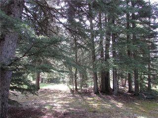 Photo 7: 127, 5241 TWP Rd 325A: Rural Mountain View County Land for sale : MLS®# C4299936