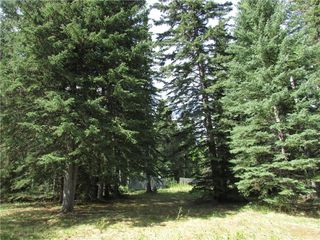 Photo 9: 127, 5241 TWP Rd 325A: Rural Mountain View County Land for sale : MLS®# C4299936