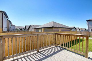 Photo 6: 16744 120 Street NW in Edmonton: Zone 27 House for sale : MLS®# E4208233
