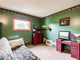 Photo 33: 216 MT COPPER Park SE in Calgary: McKenzie Lake Detached for sale : MLS®# A1025995