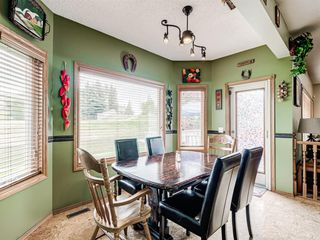 Photo 13: 216 MT COPPER Park SE in Calgary: McKenzie Lake Detached for sale : MLS®# A1025995