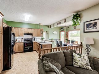Photo 16: 216 MT COPPER Park SE in Calgary: McKenzie Lake Detached for sale : MLS®# A1025995