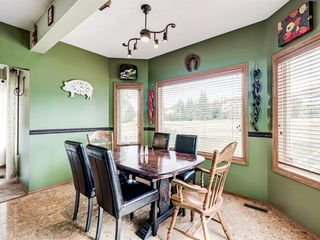 Photo 12: 216 MT COPPER Park SE in Calgary: McKenzie Lake Detached for sale : MLS®# A1025995