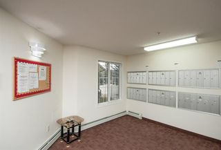 Photo 8: 1111 Millrise Point SW in Calgary: Millrise Apartment for sale : MLS®# A1043747