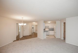 Photo 12: 1111 Millrise Point SW in Calgary: Millrise Apartment for sale : MLS®# A1043747