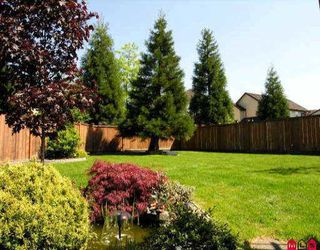 Photo 8: 21060 86TH AV in Langley: Walnut Grove House  : MLS®# F2610902