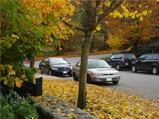 "Photo 17: 306 625 PARK Crescent in New Westminster: GlenBrooke North Condo for sale in ""Westhaven"" : MLS®# V1040934"