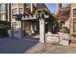 "Photo 3: 361 2175 SALAL Drive in Vancouver: Kitsilano Condo for sale in ""SAVONA"" (Vancouver West)  : MLS®# V1052921"
