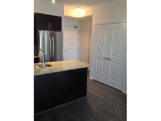 Photo 1: 07 85 East Liberty Street in Toronto: Niagara Condo for lease (Toronto C01)  : MLS®# C2942948