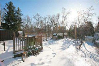 Photo 5: 190 Cedar Avenue in Richmond Hill: Harding House (Bungalow) for sale : MLS®# N3131080