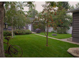Photo 40: 3211 KILKENNY Road SW in Calgary: Killarney/Glengarry House for sale : MLS®# C4040457