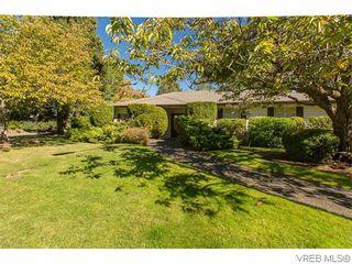 Photo 20: 829 Leota Pl in VICTORIA: SE Cordova Bay House for sale (Saanich East)  : MLS®# 742454