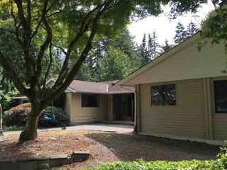 Photo 11: 19750 46A Avenue in Langley: Langley City House for sale : MLS®# R2133589