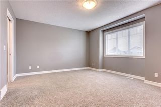 Photo 17: 97 COPPERPOND Heights SE in Calgary: Copperfield House for sale : MLS®# C4112149