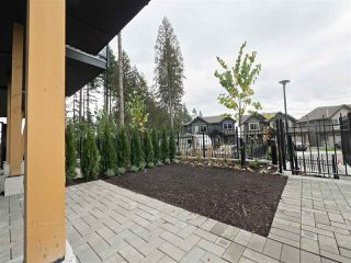 """Photo 18: 113 3525 CHANDLER Street in Coquitlam: Burke Mountain Townhouse for sale in """"WHISPER"""" : MLS®# R2210728"""