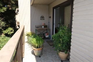 Photo 15: 301 1385 DRAYCOTT ROAD in North Vancouver: Lynn Valley Condo for sale : MLS®# R2193086