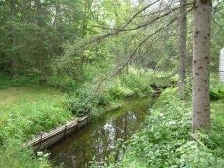 Photo 10: 6519 Pioneer Village Lane in Ramara: Rural Ramara Property for sale : MLS®# S4165688