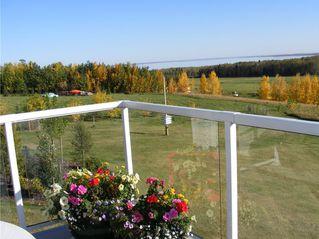 Photo 7: 15 420068 Highway 771 in Rural Ponoka County: Poulsen's Estates Residential Acreage for sale (Ponoka County)  : MLS®# CA0140672