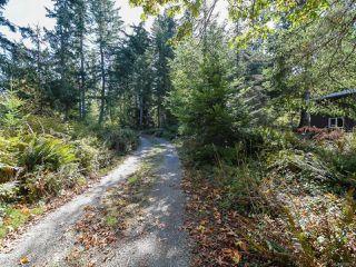 Photo 45: 1841 Gofor Rd in COURTENAY: CV Comox Peninsula House for sale (Comox Valley)  : MLS®# 798616