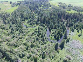 Photo 19: Twp Rd 470 Rge Rd 244: Rural Wetaskiwin County Rural Land/Vacant Lot for sale : MLS®# E4145125
