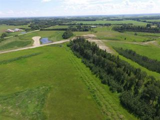 Photo 18: Twp Rd 470 Rge Rd 244: Rural Wetaskiwin County Rural Land/Vacant Lot for sale : MLS®# E4145125