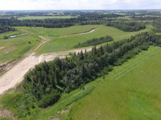 Photo 7: Twp Rd 470 Rge Rd 244: Rural Wetaskiwin County Rural Land/Vacant Lot for sale : MLS®# E4145125