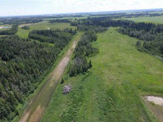 Photo 13: Twp Rd 470 Rge Rd 244: Rural Wetaskiwin County Rural Land/Vacant Lot for sale : MLS®# E4145125