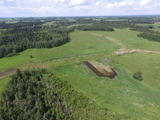 Photo 9: Twp Rd 470 Rge Rd 244: Rural Wetaskiwin County Rural Land/Vacant Lot for sale : MLS®# E4145125