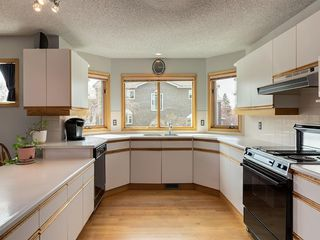 Photo 11: 2222 20 Street SW in Calgary: Richmond Detached for sale : MLS®# C4243796