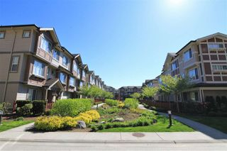"""Photo 16: 47 10151 240 Street in Maple Ridge: Albion Townhouse for sale in """"ALBION STATION"""" : MLS®# R2381398"""