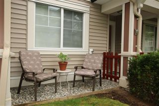 """Photo 13: 47 10151 240 Street in Maple Ridge: Albion Townhouse for sale in """"ALBION STATION"""" : MLS®# R2381398"""
