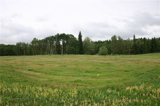 Photo 2: 266083 323 Avenue W: Rural Foothills County Land for sale : MLS®# C4287841