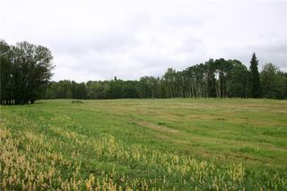 Photo 8: 266083 323 Avenue W: Rural Foothills County Land for sale : MLS®# C4287841