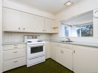 Photo 10: 905 Lawndale Ave in Victoria: Vi Fairfield East Single Family Detached for sale : MLS®# 838494