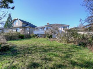 Photo 22: 905 Lawndale Ave in Victoria: Vi Fairfield East Single Family Detached for sale : MLS®# 838494