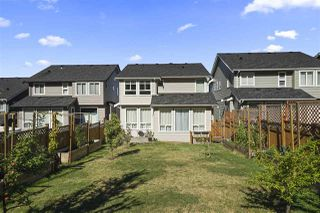 Photo 36: 10482 MCEACHERN Street in Maple Ridge: Albion House for sale : MLS®# R2492704