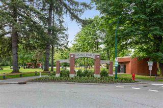 "Photo 34: 201 2378 WILSON Avenue in Port Coquitlam: Central Pt Coquitlam Condo for sale in ""Wilson Manor"" : MLS®# R2508990"