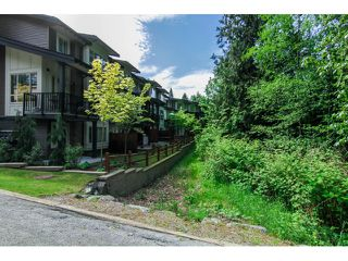"Photo 5: 7 23986 104 Avenue in Maple Ridge: Albion Townhouse for sale in ""SPENCER BROOK"" : MLS®# V1066703"