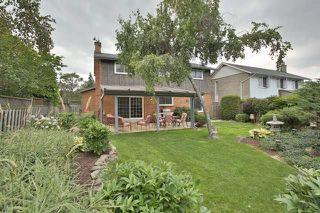 Photo 8: 1004 Runningbrook Drive in Mississauga: Applewood House (Backsplit 4) for sale : MLS®# W3287075
