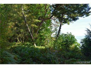 Photo 18: 5169 East Sooke Road in SOOKE: Sk East Sooke Land for sale (Sooke)  : MLS®# 355442