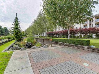 "Photo 15: 329 5500 ANDREWS Road in Richmond: Steveston South Condo for sale in ""SOUTHWATER"" : MLS®# R2107984"