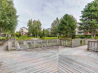 "Photo 14: 329 5500 ANDREWS Road in Richmond: Steveston South Condo for sale in ""SOUTHWATER"" : MLS®# R2107984"