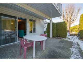 Photo 19: 15 3054 TRAFALGAR Street in Abbotsford: Central Abbotsford Townhouse for sale : MLS®# R2132060