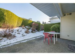 Photo 20: 15 3054 TRAFALGAR Street in Abbotsford: Central Abbotsford Townhouse for sale : MLS®# R2132060