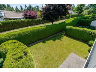 "Photo 18: 50 3054 TRAFALGAR Street in Abbotsford: Central Abbotsford Townhouse for sale in ""Whispering Pines"" : MLS®# R2183313"