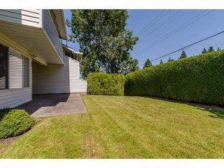 "Photo 20: 50 3054 TRAFALGAR Street in Abbotsford: Central Abbotsford Townhouse for sale in ""Whispering Pines"" : MLS®# R2183313"