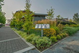 "Photo 28: 40 2310 RANGER Lane in Port Coquitlam: Riverwood Townhouse for sale in ""Fremont Blue by Mosaic"" : MLS®# R2195292"