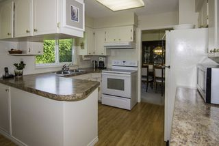Photo 6: 5531 CHEMAINUS Drive in Richmond: Lackner House for sale : MLS®# R2200783