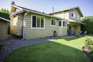 Photo 19: 5531 CHEMAINUS Drive in Richmond: Lackner House for sale : MLS®# R2200783