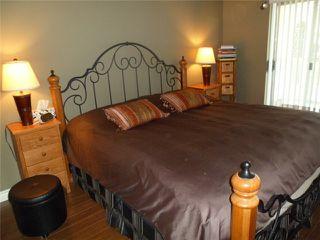 Photo 4: # 403 3 K DE K CT in New Westminster: Quay Condo for sale : MLS®# V998633